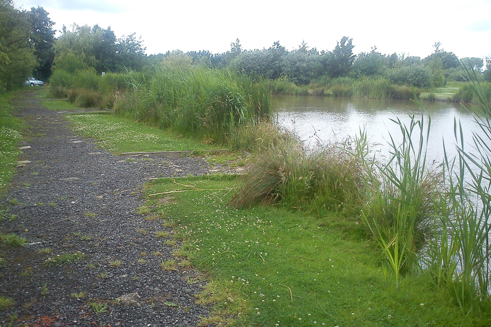 Sandwich Lakes Freshwater Coarse Fishing Lakes